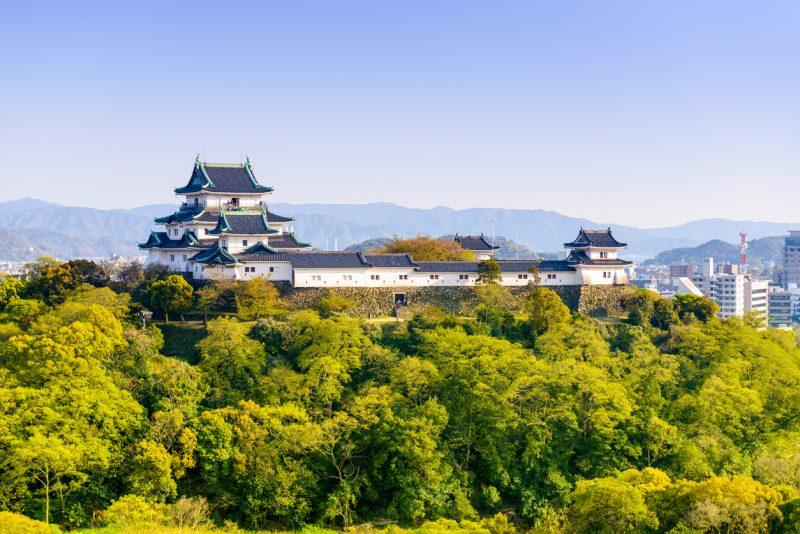 和歌山城で「築城の影に隠された起死回生の秘策」謎解きを体験