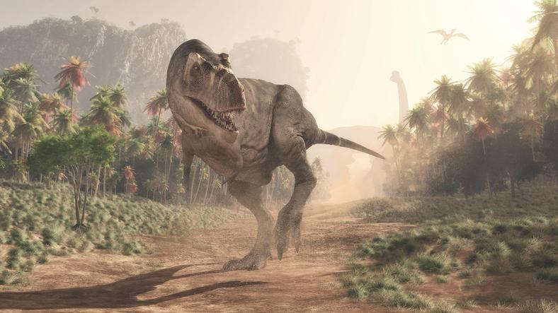 9 【謎解きに挑戦したい子どもたちにおすすめ】恐竜の世界でリアル宝探し!「古代探検 恐竜ハンター」