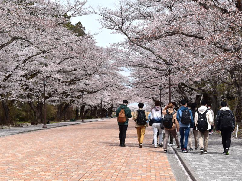 日本大学工学部様の新入生研修で周遊型謎解き「トレジャーハンティング」を実施しました!
